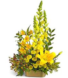 Yellow Dish Arrangement