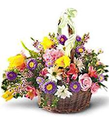 Basket - Multicolor