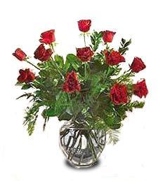 A Valentine's Day Love