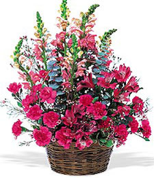 Basket with Mixed Pinks