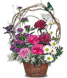 FlowerDelivery.com coupon: Butterfly Basket
