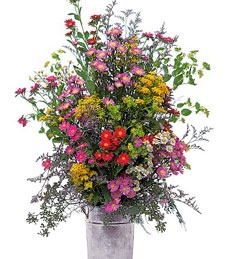 French Country Bouquet