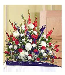 Red/White/Blue Arrangement