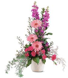 Exquisite Blooms