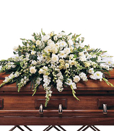 Beauteous Casket