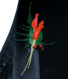 Scarlet Boutonniere