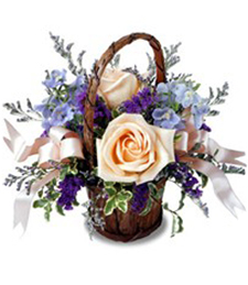 FlowerDelivery.com coupon: Peach Rose Basket