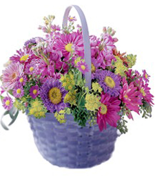 FlowerDelivery.com coupon: How Radiant Basket