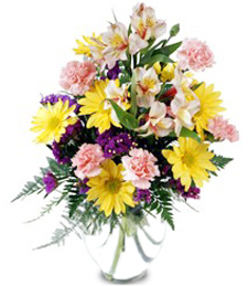 FlowerDelivery.com coupon: Festive Wishes Bouquet