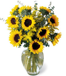 Endless Sunflowers Bouquet