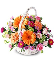 Floral Burst Thinking of You Arrangement
