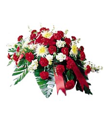 Brilliant Remembrance Funeral Casket Spray