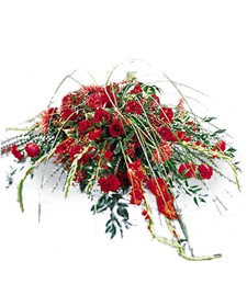 Red Rouge Funeral Casket Spray