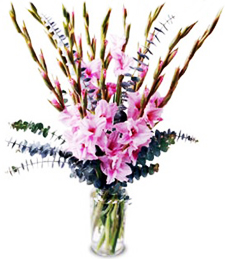 Exotic Glory Congratulations Bouquet