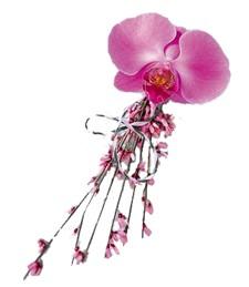 Opulent Orchid Corsage