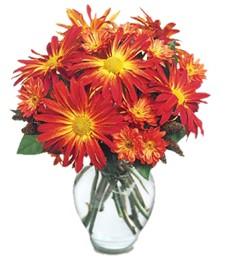 Fireburst Bouquet