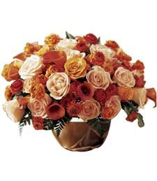 Abundant Glory Rose