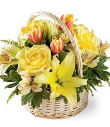 Garden Spring Basket