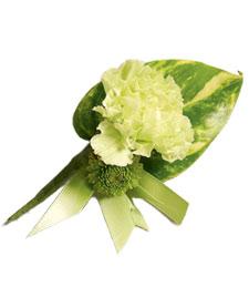 Green Tropics Boutonniere