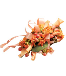 Spring Peaches Corsage