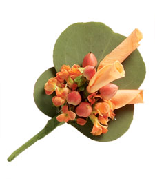 Spring Peaches Boutonniere