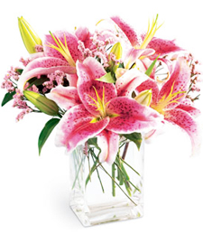 FlowerDelivery.com coupon: My Pink Lily