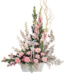 Pink Pastel Pleasures