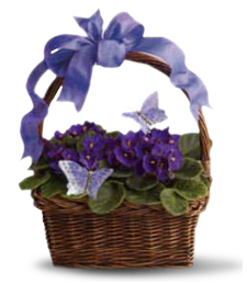 FlowerDelivery.com coupon: My Pretty Violet