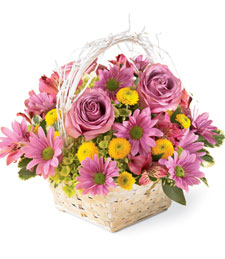 Natural Beauty Sympathy Basket