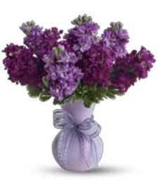 Violet Passions