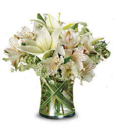 FlowerDelivery.com coupon: White Grandeur