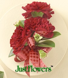 Crimson Carnations Trio