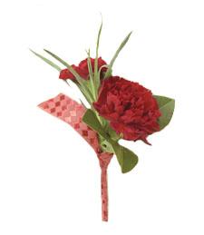 Crimson Carnations Duo
