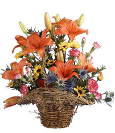 Rainbow Blooms Basket