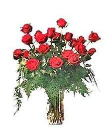 2 Dz Large Red Birthday Roses