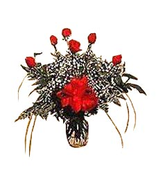 Roses by the Half-Dozen