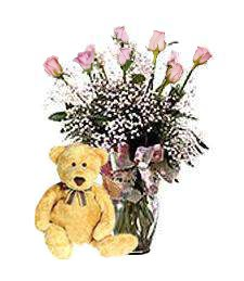 One-Dozen Pink Roses & Teddy Bear Arrangement