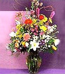 Vivacious Wildflowers