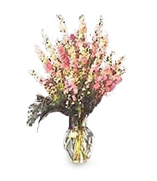 Wild Larkspur Vase
