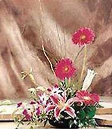Tropical Flower Dish