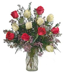 One Dozen Red and White Roses