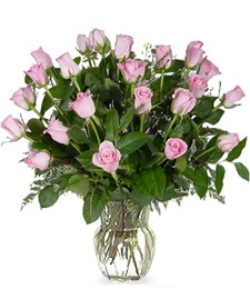 Two-Dozen Pink Get Well Roses