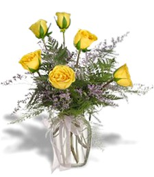 Half-Dozen Yellow Get Well Roses