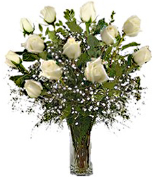 One-Dozen White 'Just Because' Roses