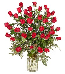 3-Dozen Thinking of You Roses