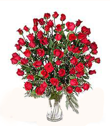 5-Dozen 'Just Because' Roses--WOW!