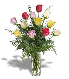 One-Dozen Assorted Thinking of You Roses