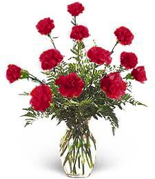 Red 'Just Because' Carnations