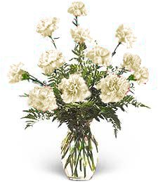 White Birthday Carnations
