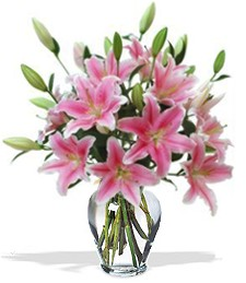 Fragrant Pink Happy Birthday Lilies